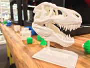 3D Printed Dinosaur Head