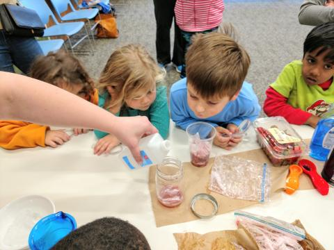 Looking for an adventure? With everything from family activities to recommended reads, Charlotte Mecklenburg Library is a one-stop shop for STEAM education and resources. Read more about how we're celebrating STEAM this month.